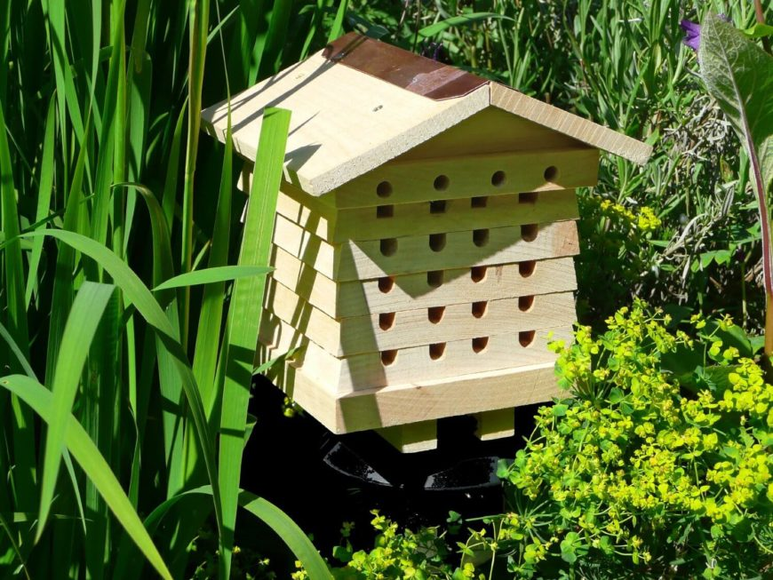 26 Backyard Bee Hive Ideas - Amazon