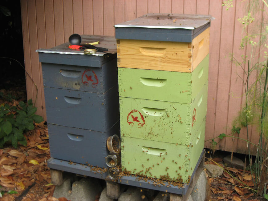 28 Backyard Bee Hive Ideas - Flickr