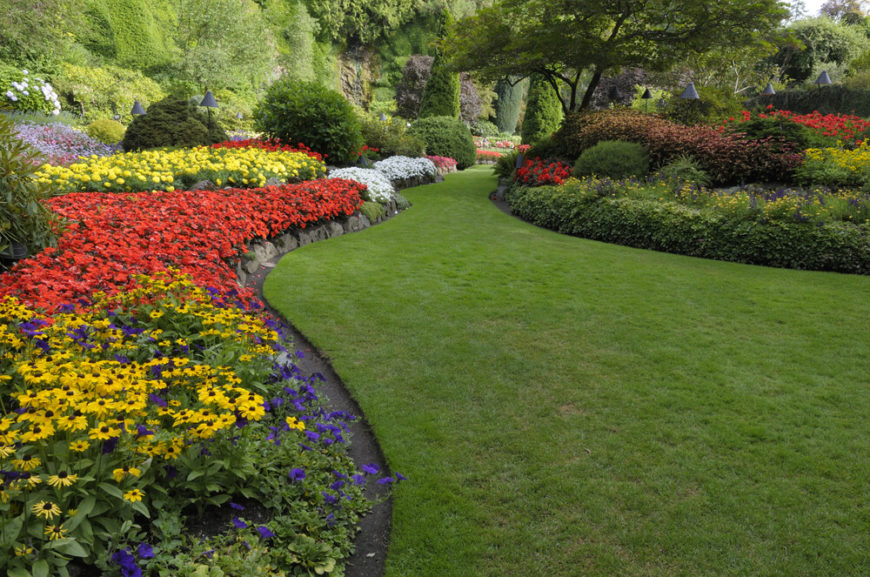 A well maintained large garden can bring your yard to life by providing unmatched color and vibrancy. A large and flourishing garden can give your space purpose and direction.