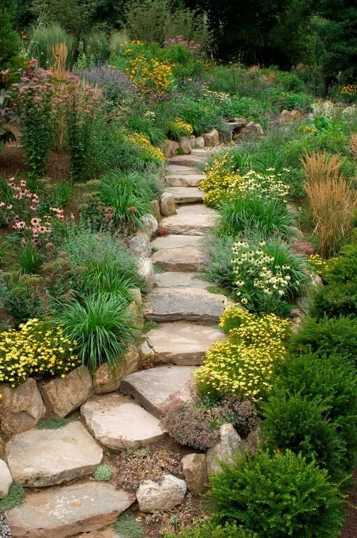 Wild plants pair with rough cut stones and stairs perfectly. If you want a rugged and rustic look this is a pairing that will work for you.