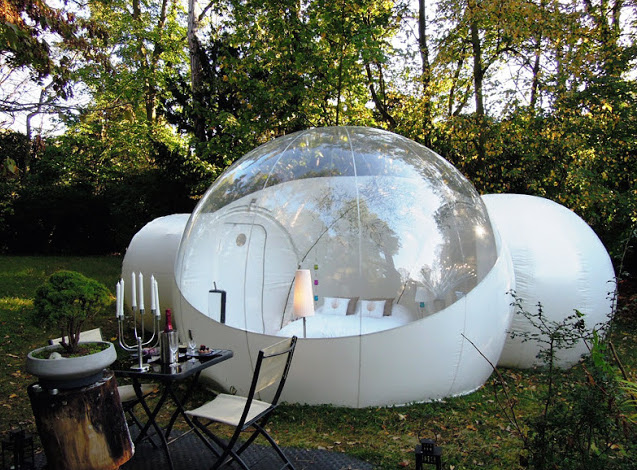 Here Is A Wonderful Clear Top Dome With A Bed Inside. This Is The Most