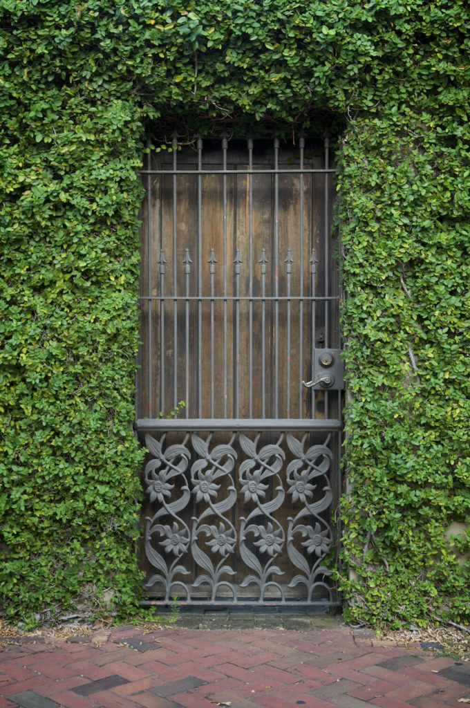 When you let vines consume your outside walls entirely, doorways seem to lead into a building made from shrubs. What kinds of mysteries could be waiting through that door? It is a magical aesthetic that is both attractive and intriguing.