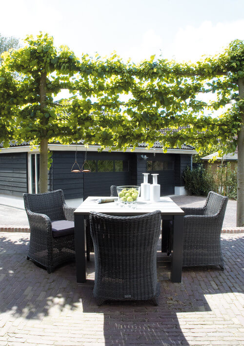 One interesting way to hang vines is across lines between poles. These vines don't make walls but rather hang in the air, giving a floating garden effect. This is a fun way to build some privacy and liven up your space.