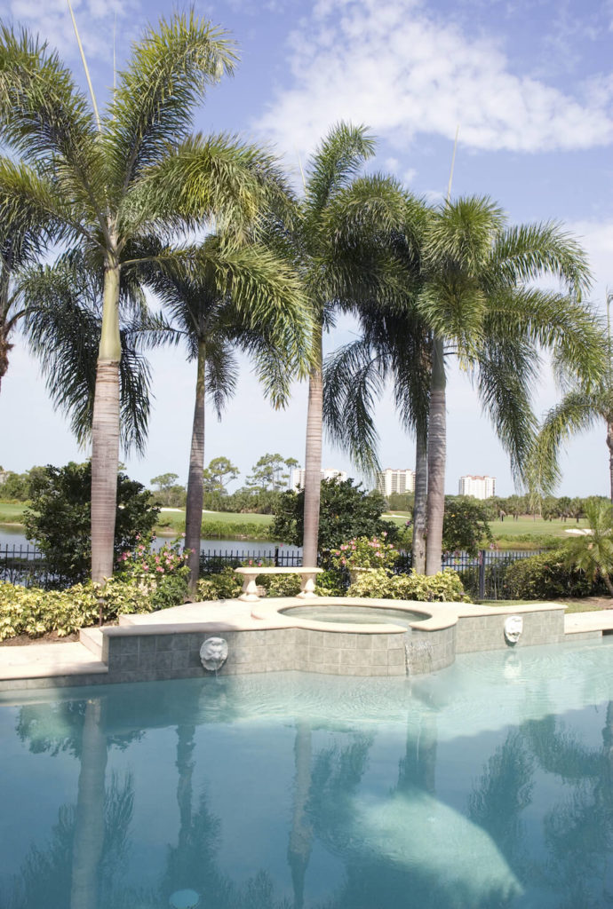 Ordinaire The Perfect Place For Planting A Few Palm Trees Is Around Your Pool. Palms  Can
