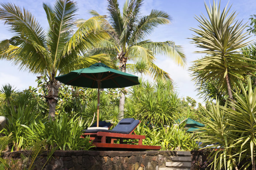 Attirant A Mix Of Palms And Tall Grasses Provides A Lovely Island Feel. Put A  Reclining