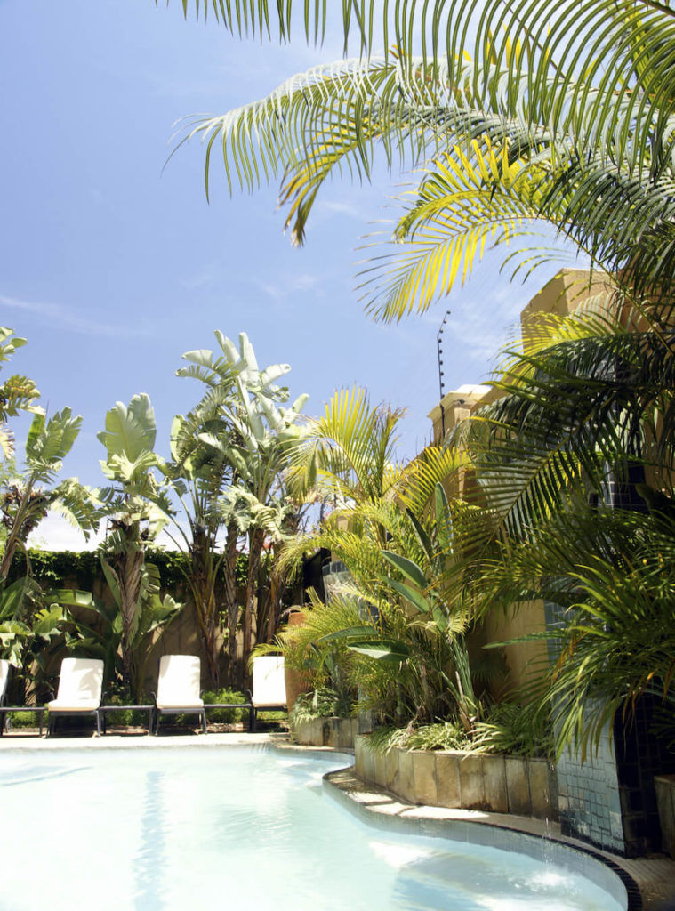 30 Spectacular Backyard Palm Tree Ideas on Palm Tree Backyard Ideas id=13491