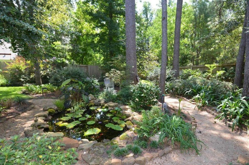 A Small Garden Of Plants Looks Great Next To A Small Pond. Marsh Plants Look