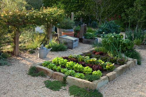 A bricked off vegetable garden is the perfect small garden. It looks amazing and can provide nutrition to you and your family. Your yard will not only look great, you will feel great as well.