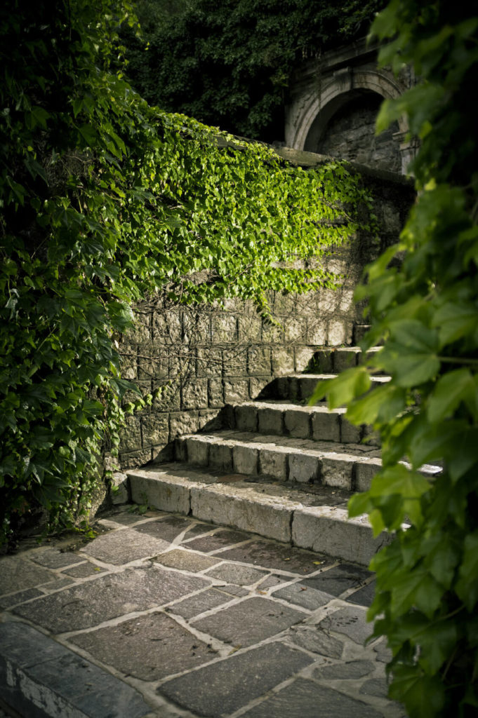 These stone steps have a castle-like appeal. The walls nearby are covered in vines which adds to the regal and historic appeal. You will feel like royalty traversing these regal steps.